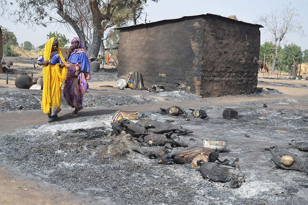 Young girls fleeing Boko Haram walk past livestock burned by the militants on Feb. 6 in Mairi village, near Maiduguri.