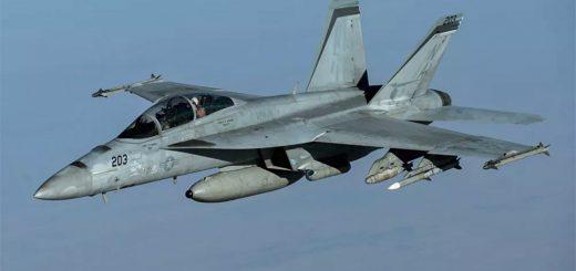 U.S. Navy F/A-18F Super Hornet(203)